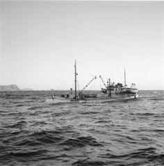Fiskeflåten. Rogaland. Perodd R-89-SN. Sailing Ships, San Francisco Skyline, Flora, Boat, Travel, Dinghy, Viajes, Plants, Boats