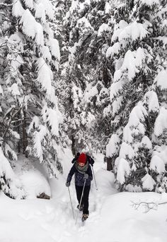 Explore snowy forests and remote mountain villages and experience the Switzerland tourists never see. Snowshoeing is the perfect alternative for people who don't want to ski, or who want to escape the crowded slopes and enjoy a bit of nature. Mountain Village, Mountain S, Snowy Forest, Snowshoe, The Mountains Are Calling, Winter Wonder, Switzerland, Adventure Travel, Skiing