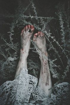 ᴄʀᴇᴀᴛᴜʀᴇ ᴏғ sɴᴏᴡ's armageddon images from the web - southern gothic Story Inspiration, Writing Inspiration, Character Inspiration, Southern Gothic, Dark Photography, Horror Photography, Tim Burton, Macabre, Dark Art