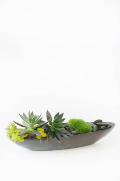 Two succulents, moss, and river rocks rest peacefully in the hull of a boat-shaped black vessel. From Le Printemps via @BloompopHQ