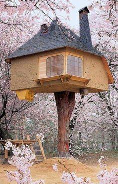 Tree house , Japan