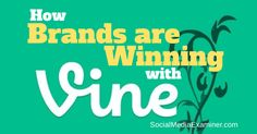 Do you use Vine as part of your Twitter marketing? This article shows 10 fun ways companies use Vine in their Twitter marketing.