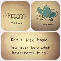 Butterfly metaphor