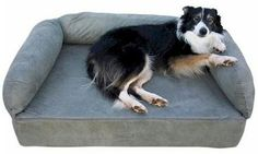 Snoozer Luxury Pet Sofa, X-Large, Brandywine ** To view further for this item, visit the image link.
