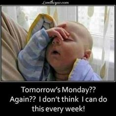 Check out: Baby Memes - Tomorrow's Monday? One of our funny daily memes selection. We add new funny memes everyday! Bookmark us today and enjoy some slapstick entertainment! Funny Baby Memes, Funny Babies, Funny Kids, Funny Cute, The Funny, Funny Work, Funny Happy, Baby Humor, Funny Sayings