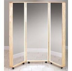 Tri window   http://www.globalmedco.com/medical-equipment-supplies/physical-therapy-products/clinton-6223-mobil-tri-panel-mirror.html