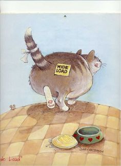 By Gary Patterson I Love Cats, Cute Cats, Funny Cats, Adorable Kittens, Crazy Cat Lady, Crazy Cats, Gary Patterson, Here Kitty Kitty, Fat Kitty