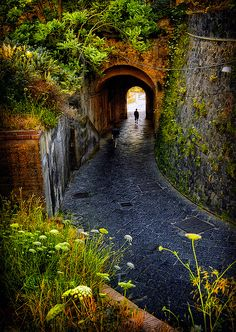 "sunsurfer: "" Walkway Tunnel, Campania, Italy photo by agedsenator "" Places Around The World, Oh The Places You'll Go, Places To Travel, Places To Visit, Around The Worlds, Foto Nature, Magic Places, Dream Vacations, Italy Travel"
