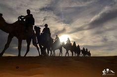 ¿Sueñas con tranquilidad, sol y con desconectar de todo? ¡Bienvenido a #Zagora! un lugar de reflexión y de merecido descanso a las puertas del desierto del #sáhara 🐪