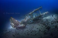 Nature, underwater and tourism photographer – Darren Jew