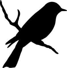 Bird on a branch #birds #silhouette | BRANCO E PRETO BIRDS | Pinterest