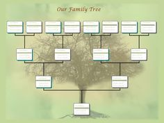 Family Tree Fillable Template  Printable Blank Pedigree Chart