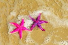 alice is wonderful  Love starfish, especially PINK starfish :-)