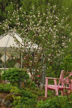 Ruusunmekko garden's greenhouse 'Lataamo' in May 2014