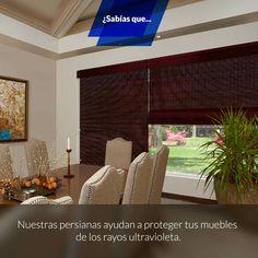 #Tip #MD #Marrón