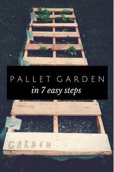 Make this pallet garden in 7 easy steps