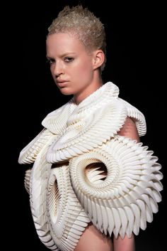 Crystallization* (2010)    Amsterdam Fashion Week  *with Iris Van Herpen and .MGX