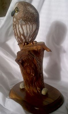 Evelyn Hurford - - Saw-whet Owl Carving Saw Whet Owl, Owl Bird, Carving, Sculpture, Photos, Home Decor, Pictures, Decoration Home, Room Decor