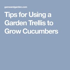 Tips for Using a Garden Trellis to Grow Cucumbers