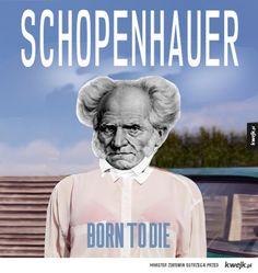 Schopenhauer Philosophy Memes, Meme Generation, Depression Memes, Born To Die, Art Memes, Mount Rushmore, Kpop, Pure Products, Humor