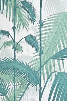 Palm Jungle Wallpaper Fresh illustrated Palm tree wallpaper in aqua on white. - très frais, pour une jungle !!