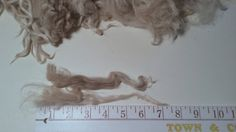Suri Alpaca Locks Natural White Unwashed 6-8 by BreezyRidgeAlpacas