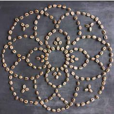 Sunflower seed mandala
