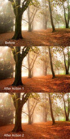 Exultant Photoshop For Beginners Lightroom Photoshop Tutorial, Photoshop Help, Effects Photoshop, Photoshop Overlays, Photoshop For Photographers, Photoshop Actions, Photoshop Elements, Photoshop Design, Autumn Photography