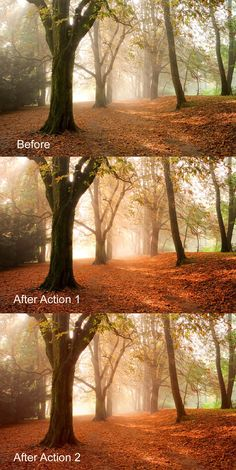 Enhance Fall Scenes - Photoshop Actions 135