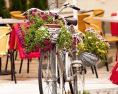 Arrivano i bar bike friendly: da Roma a Torino