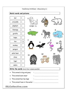 Vocabulary Matching Worksheet - Elementary 2.6 - (WILD ANIMALS)