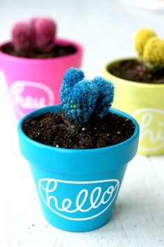10 Silhouette CAMEO Projects for Beginners // Hello Cactus Planters - The Pretty Life Girls | If you are a Silhouette beginner wondering where to start with this magic machine let us help you get motivated to start making! We've rounded up 10 of our favorite Silhouette CAMEO projects for beginners that will help you build confidence in your skills while creating some reeeeally cute stuff. You are gonna have a BLAST and we cannot wait to see what you make! #craftcutter #cuttingmachine