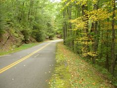 5. Pine Mountain Road (US-119) Berea Kentucky, Cumberland Gap, Us Road Trip, Vacation Places, Camping Places, Vacations, Motorcycle Travel, Motorcycle Rides, Pine Mountain