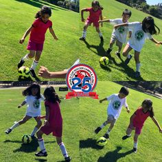 World Cup Soccer Camps And Soccer Clinics Providing soccer training in the San Francisco, Santa Clare, Santa Cruz, Gilroy, Monterey and Salinas areas. Soccer Camps, Soccer Trainer, Spring Break, Summer, View Video, Santa Clara, Best Player, Goalkeeper, Comfort Zone