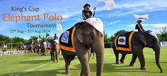 King's Cup Elephant Polo Tournier 27. - 31. August 2014
