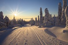 Most Beautiful Places in Finland, Lapland, Rovaniemi Lappland, Romantic Places, Beautiful Places, Beautiful Scenery, Amazing Places, Lago Moraine, Costa Leste, Skier, Christmas In Europe