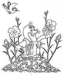 Výsledek obrázku pro omaľovánky krtek