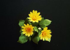 Wedelia Trilobata Flowers - Craft Tutorial