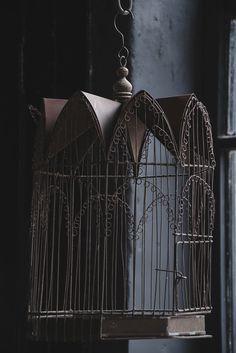 Image of Vintage Birdcage
