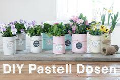 creativLIVE: Upcycling Konserven-Dosen in Pastellfarben