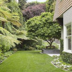 Bates Res. Garden. Pierce St. San Francisco