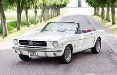 Ready to get your Ford Mustang convertible back into mint condition to cruise? Mustang Rouge, Ford Mustang 1964, Mustang Girl, Car Ford, Ford Mustangs, Ford Trucks, Mustang Cabrio, Ford Mustang Convertible, Classic Mustang