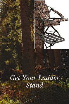 We have comprised a list of some of the best ladder stands for bow hunting and we hope you had fun while reading this Bow Stabilizer, Ladder Stands, Best Ladder, Bow Hunting, You Got This, Bows, Fun, Target, Reading