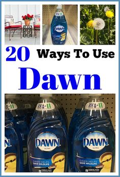 20 Ways to Use Dawn