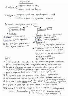 Ο κύκλος του Δημοτικού: Γραμματική - Οι μετοχές [ Δ', Ε', ΣΤ' τάξη, Γλώσσα, Γραμματική ]