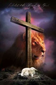 Behold the Lamb of God who takes away the sins of the world. John 1:29Behold the Lion of the tribe of Judah has prevailed. Rev 5:5