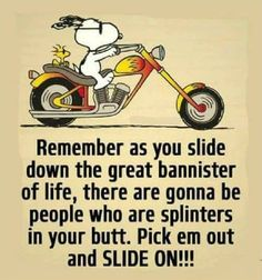 "Pick em out and SLIDE ON! 😁😁😁 ""Remember as you slide down the great bannister of life, there are gonna be people who are splinters in your butt. Pick em out and SLIDE ON!"" Visit our Snoopy. Peanuts Quotes, Snoopy Quotes, Charlie Brown Quotes, Charlie Brown And Snoopy, Peanuts Cartoon, Peanuts Snoopy, Snoopy Cartoon, Motivational Quotes, Funny Quotes"