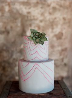 Succulent and hot pink cake.