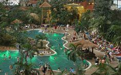 FOTO Paradisul tropical din Germania