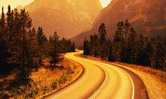 Road Winding Through Grand Teton National Park, Wyoming
